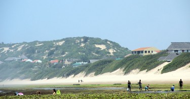 tofo beach in the morning